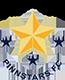 Pinn Stars FC logo